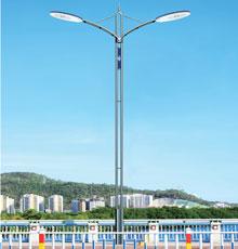 LED路灯DG-13601