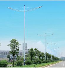 LED路灯DG-13501