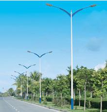 LED路灯DG-13201