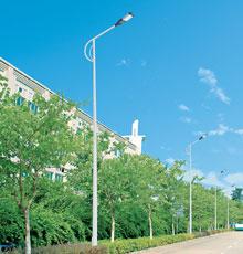 LED路灯DG-11203